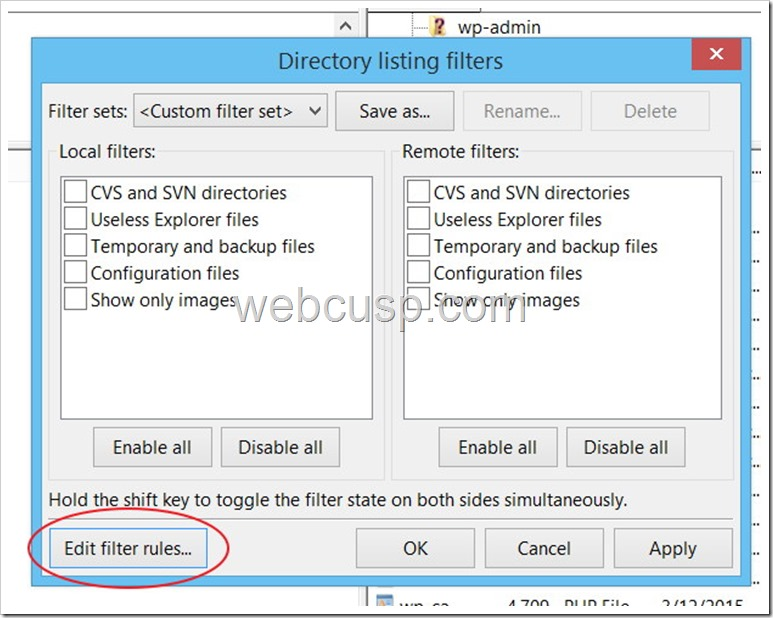 FileZilla File Filter1