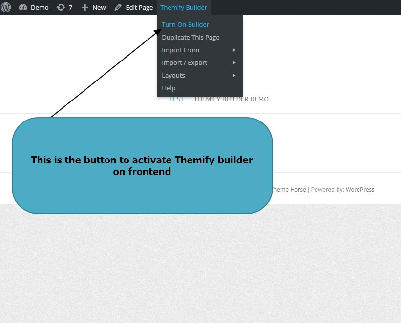 Themify Builder Editor button