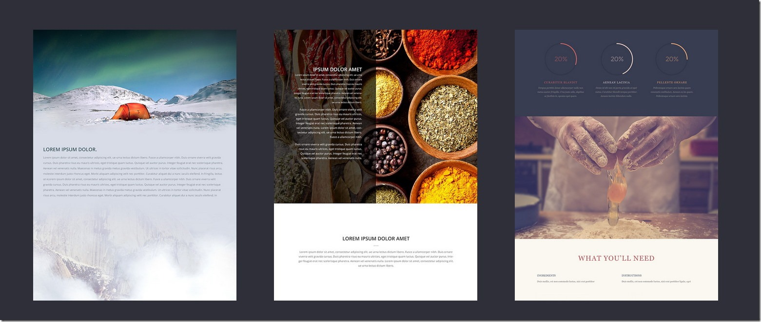 divi-builder-sample1_thumb